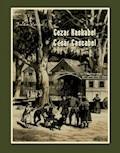 Cezar Kaskabel. César Cascabel - Jules Verne - ebook