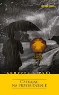 Czekając na przebudzenie - Andrzej Lipski - ebook