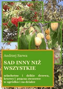 Sad inny niż wszystkie - Andrzej Sarwa - ebook