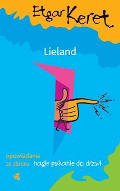 Lieland - Etgar Keret - ebook