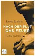 Nach der Flut das Feuer - James Baldwin - E-Book