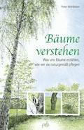 Bäume verstehen - Peter Wohlleben - E-Book