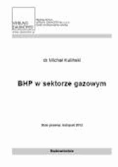 BHP w sektorze gazowym - Michał Kuliński - ebook