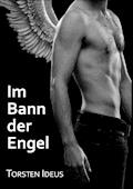 Im Bann der Engel - Torsten Ideus - E-Book
