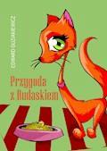 Przygoda z Rudaskiem - Edward Guziakiewicz - ebook