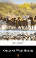 Valley of Wild Horses - Zane Grey - ebook
