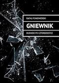 Gniewnik. Bushido po czterdziestce - Rafał Poniewierski - ebook