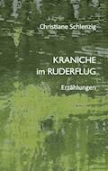 Kraniche im Ruderflug - Christiane Schlenzig - E-Book