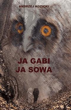 Ja Gabi, ja Sowa - Andrzej Kozicki - ebook