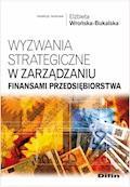 Wyzwania strategiczne w zarządzaniu finansami przedsiębiorstwa - Elżbieta Wrońska-Bukalska - ebook