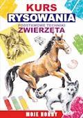 Kurs rysowania. Podstawowe techniki. Zwierzęta - Mateusz Jagielski - ebook