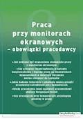 Praca przy monitorach ekranowych – obowiązki pracodawcy - Agata Lankamer–Prasołek - ebook