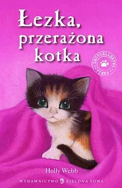 Łezka przerażona kotka - Holly Webb - ebook