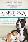 Sekret grzecznego psa - Marcin Konefał - ebook