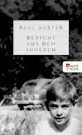 Bericht aus dem Inneren - Paul Auster - E-Book