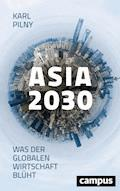 Asia 2030 - Karl Pilny - E-Book