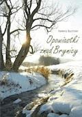 Opowiastki znad Brynicy - Helena Buchner (Leonia) - ebook