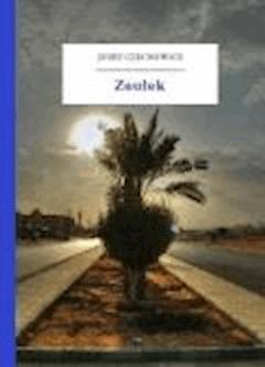 Zaułek - Czechowicz, Józef - ebook
