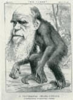 De l'Origine des especes - Charles Darwin - ebook