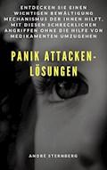 Panik Attacken - Lösungen - Andre Sternberg - E-Book