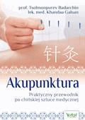 Akupunktura. Praktyczny przewodnik po chińskiej sztuce medycznej - Tsolmonpurev Badarchin, Khandaa Galsan - ebook