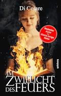 Im Zwielicht des Feuers - Reinhold Di Cesare - E-Book