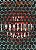 Das Labyrinth erwacht - Rainer Wekwerth - E-Book