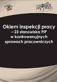 Okiem inspekcji pracy. 23 stanowiska PIP w kontrowersyjnych sprawach pracowniczych - Katarzyna Pietruszyńska, Joanna Kaleta - ebook