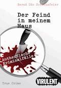 Der Feind in meinem Haus - Bernd Udo Schwenzfeier - E-Book