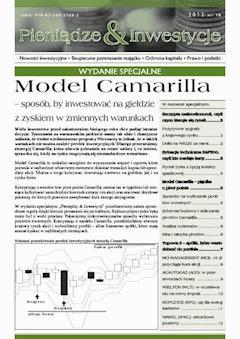 Model Camarilla - Michał Pietrzyca - ebook