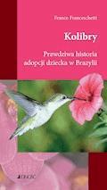 Kolibry. Prawdziwa historia adopcji dziecka w Brazylii. - Franco Franceschetti - ebook