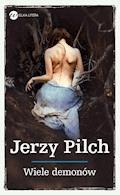 Wiele demonów - Jerzy Pilch - ebook + audiobook