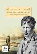 Es ist ein Treiben in mir - Alexander von Humboldt - E-Book