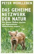 Das geheime Netzwerk der Natur - Peter Wohlleben - E-Book