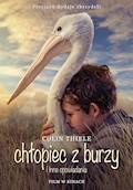 Chłopiec z Burzy - Colin Thiele - ebook