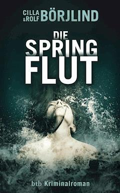 Die Springflut - Cilla Börjlind - E-Book