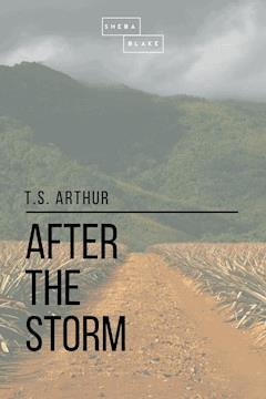 after the storm arthur t s