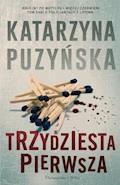 Trzydziesta pierwsza - Katarzyna Puzyńska - ebook + audiobook