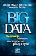 Big data - Victor Mayer-Schonberger Kenneth Cukier - ebook