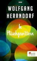 In Plüschgewittern - Wolfgang Herrndorf - E-Book