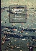 Jesień w Brukseli - Katarzyna Targosz - ebook