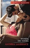 Windą do nieba - Andrea Laurence - ebook