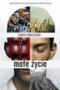 Małe życie - Hanya Yanagihara - ebook