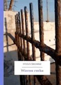 Wierna rzeka - Żeromski, Stefan - ebook