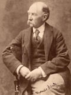 The Woodlanders - Thomas Hardy - ebook