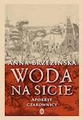 Woda na sicie - Anna Brzezińska - ebook