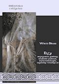 Elfy Brytyjskie gobliny, walijski folklor, elfia mitologia, legendy i tradycje - Wird Sikes - ebook