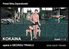 Kokaina - Paweł Bitka Zapendowski - ebook