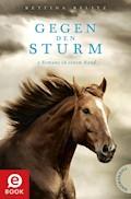 Gegen den Sturm - Bettina Belitz - E-Book