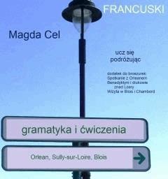 Ucz się podróżując – Orlean, Sully sur Loire, Blois. Gramatyka i ćwiczenia - Magda Cel - ebook